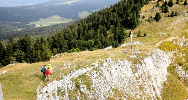 Percez les secrets du Haut-Jura